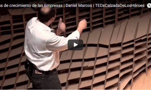 Etapas de Crecimiento de las Empresas – Daniel Marcos